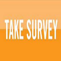 Surveys online