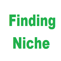 How to Find Profitable Niche