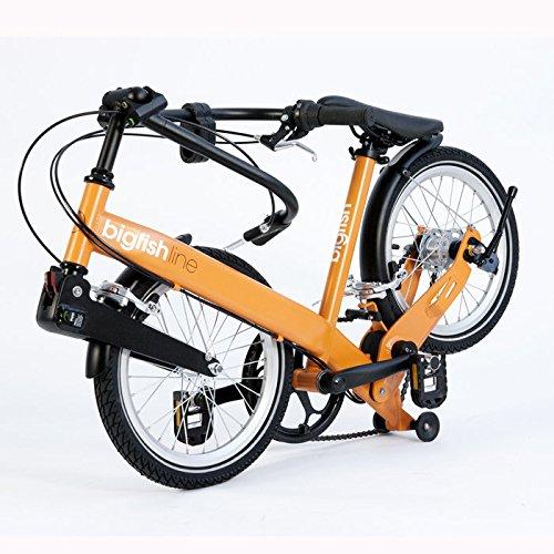 Bigfish Line 3 Speed Nexus Cn4 Folding Bike Review Review Earn